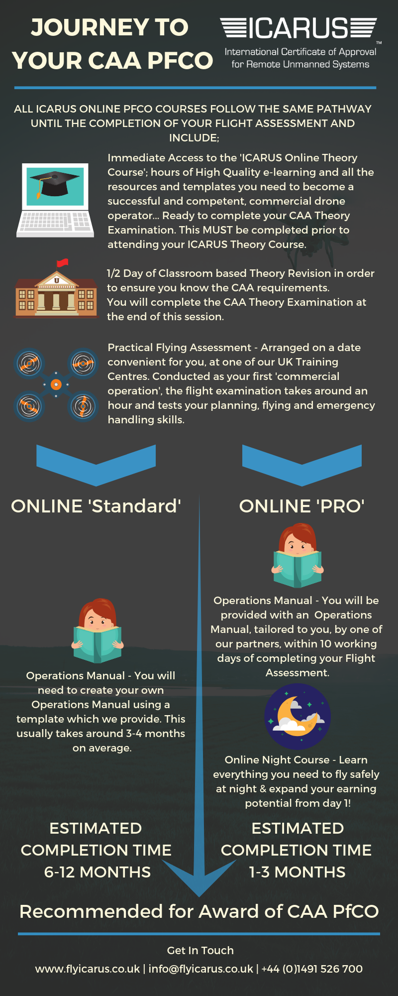 ICARUS Online Training Workflow Infographic
