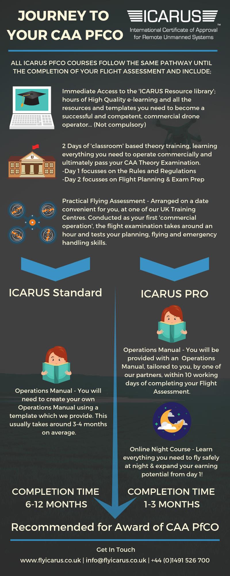 ICARUS Training Workflow Infographic